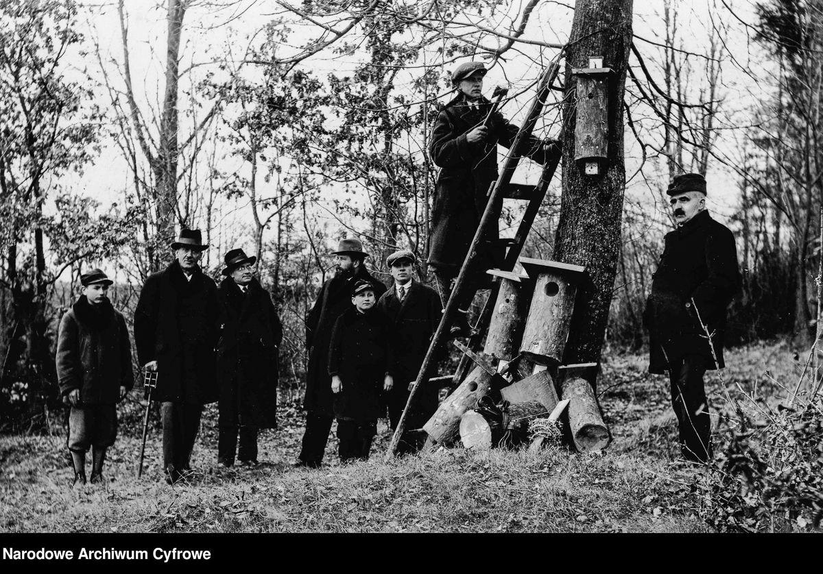Działacze Ligi Ochrony Przyrody w lesie podczas zakładania gniazd, Brzozów k. Lwowa, 1933 rok