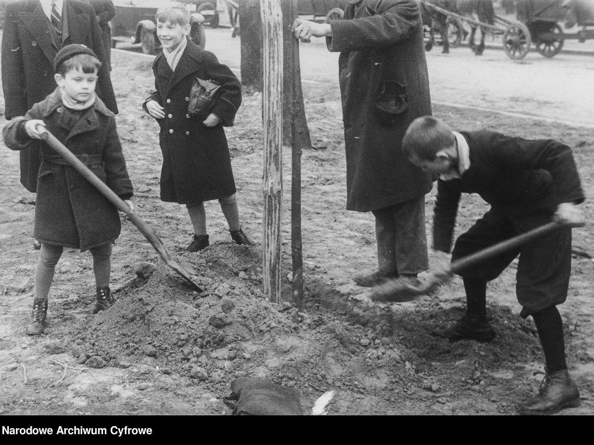 Święto Sadzenia Drzew w Warszawie, dzieci sadzące drzewo, 1937 rok