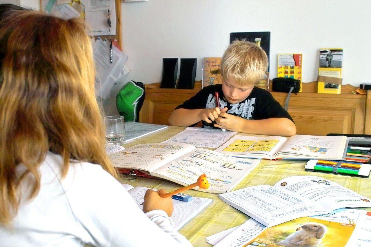Edukacja domowa. Pomysł do rozważenia