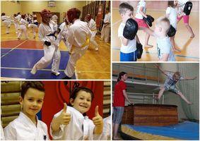 Miniatura Bydgoska Szkoła Kyokushin Karate