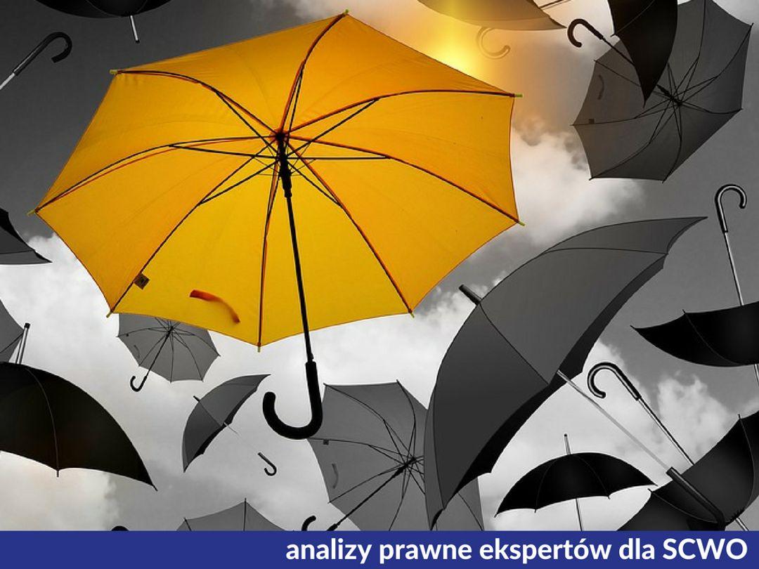 0544f0e7a7658d Ocena skutków planowanych operacji przetwarzania dla ochrony danych  osobowych - Artykuł - ngo.pl